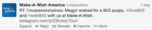 Make a Wish tweet